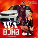 Akuapem Poloo Wa Boka Ft Amg Armani mp3 download