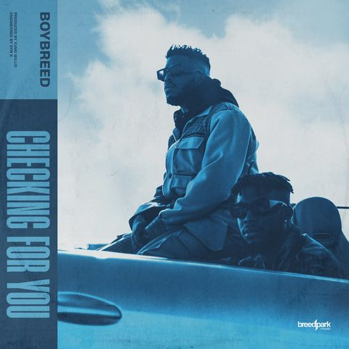 Boybreed Checking For You mp3 download