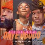Feline Chigo Ft SlowDog And Coinxy Onye Obodo mp3 download