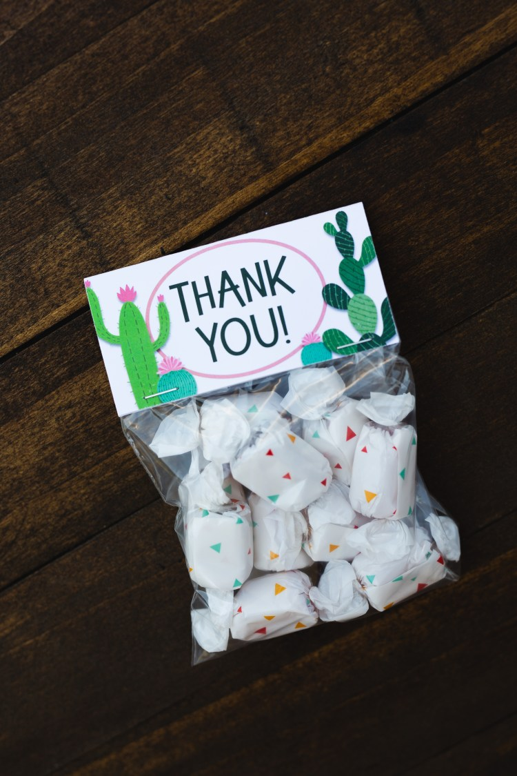 Cactus Party | Cactus Party Decor | Cactus Party Favor Bags | Cactus Party Decoration | Cactus Party Theme | Cactus Party Favors | Cactus Party Favors | Kids Cactus Party Decorations |Cactus Party Favors | Diy Cactus Party Ideas | Cactus Birthday Party | Planning a cactus theme party? These free printable cactus party treat bags are perfect for your fiesta party or cactus baby shower! #cactus #cactusparty #cactuspartyfavors #partyfavors #cactuspartydecor #cactuspartytheme #treatbags #treatbagtoppers #bagtoppers #fiestaparty #sixcleversisters