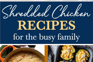 Shredded Chicken | Chicken | Chicken Recipes | Easy Dinner Recipes | Easy Healthy Dinner | Easy Chicken Recipes | Quick Dinner Ideas | Quick Meals | Quick Dinner | Family Meals | Kid Friendly Dinners | Six Clever Sisters