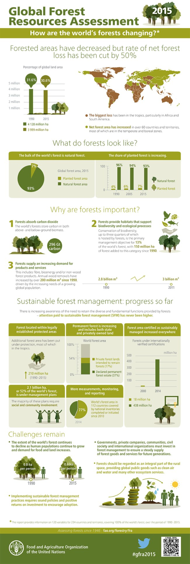 fao-infographic_forests