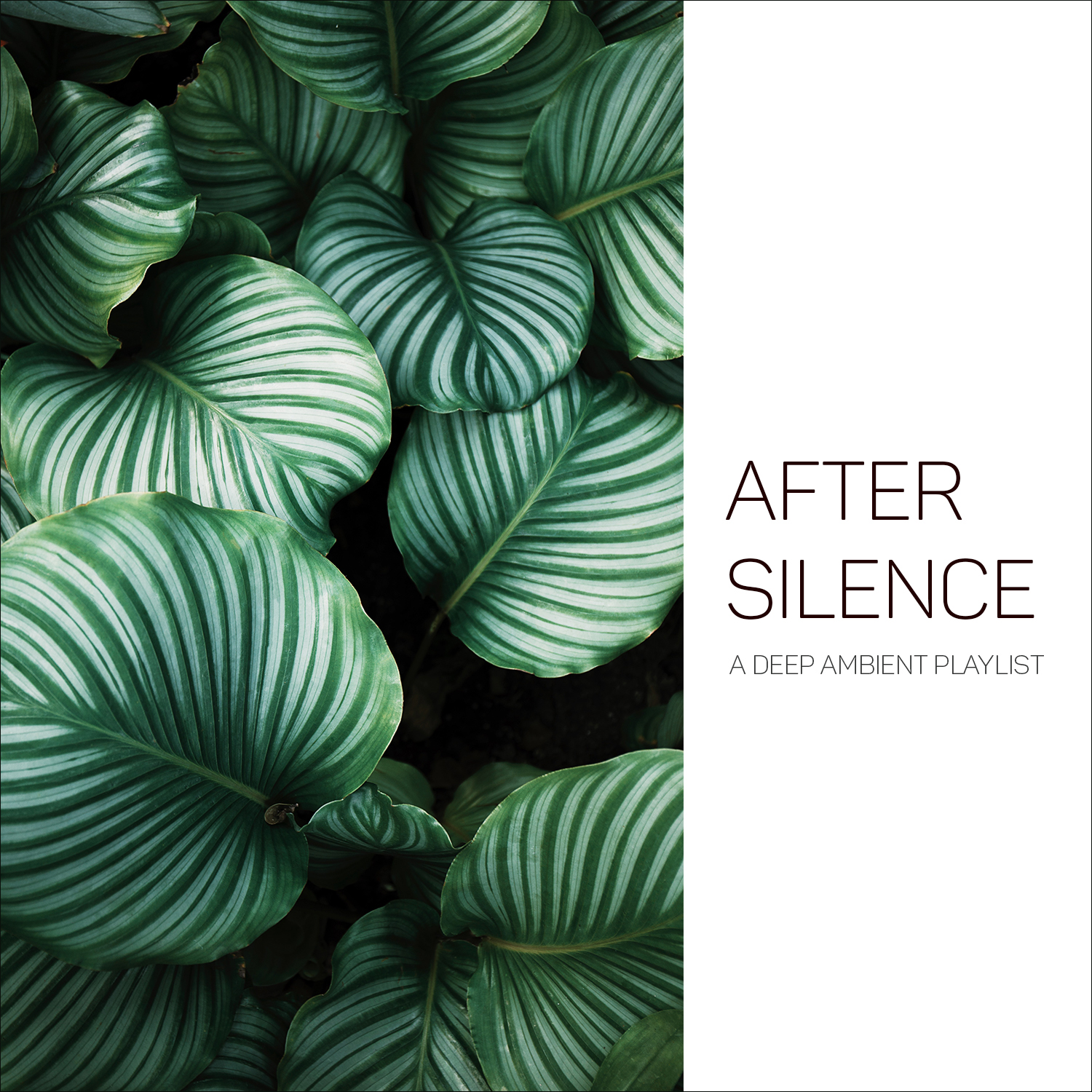 After Silence (A Deep Ambient Playlist)