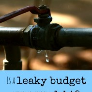 How's Your Plumbing? A Discussion on Debt
