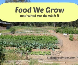 Garden Gratitude: Our Harvest Report– What we grow and what we do with it