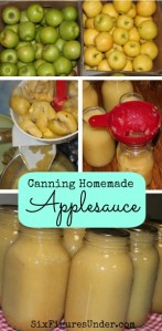 Canning Homemade Applesauce Picture Tutorial
