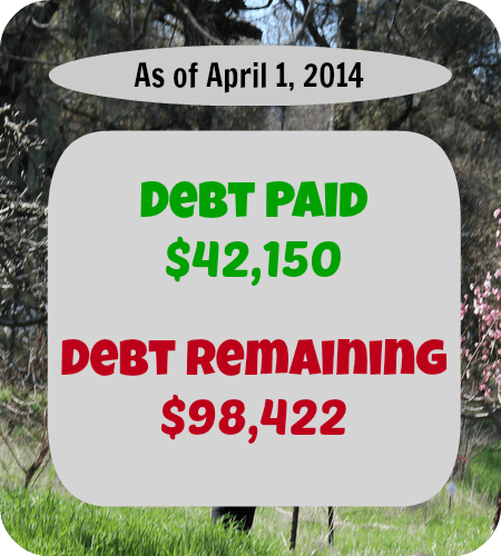 Every month we will update you on the money we earned, spent, and paid toward debt. Here's March's report!
