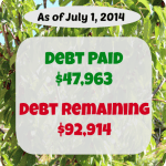 debt payoff stats july 1 2104