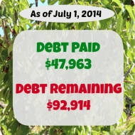 June 2014– Debt Repayment Progress Report