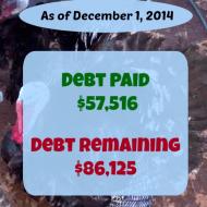 November 2014 Debt Repayment Progress Report
