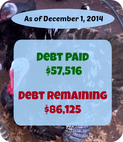 At Six Figures Under, we make our personal finances public. Here's a detailed report of our debt repayment and what we earn and spent in November 2014.