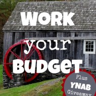 Work Your Budget