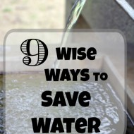 9 Wise Ways to Save Water– Conserving Water for the Wimpy and Hard Core