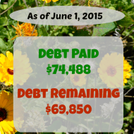 May 2015 Debt Repayment Progress Report