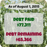 July 2015 Debt Repayment Progress Report