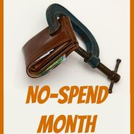 No-Spend Month Update #3– Temptations and Powdered Milk