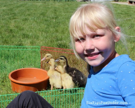Our kids loved receiving baby ducks on Easter, so we knew that they would love to give a similar gift to a family in another part of the world.