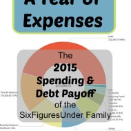 A Year of Expenses– 2015 Annual Spending and Debt Payoff Totals