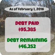 January 2016 Debt Repayment Progress Report