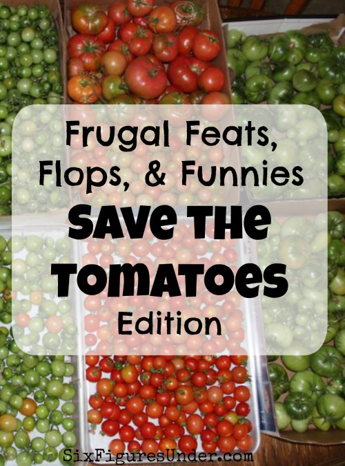 Among other frugal wins and fails, this week we saved our green tomatoes from being ruined by the frost. Letting them ripen indoors is the best way to stretch our harvest into the winter!