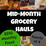 Mid-Month Grocery Shopping– January