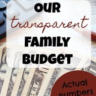 Transparent Family Budget Update– January 2018