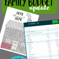 Real Family Budget Update– February 2019