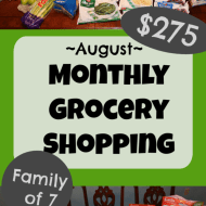 Monthly Grocery Shopping – August 2019