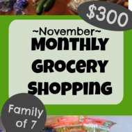 Monthly Grocery Shopping– November 2019