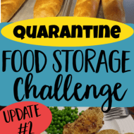 Quarantine Food Storage Challenge– Update 2