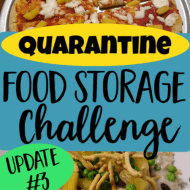 Quarantine Food Storage Challenge- Update 3