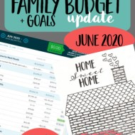Real Family Budget Update – June 2020