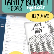 Real Family Budget Update – July 2020