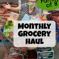 September 2020 Monthly Grocery Haul