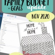 Real Family Budget Update — November 2020