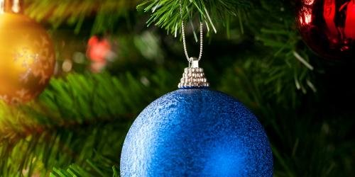 Ornament on a tree.