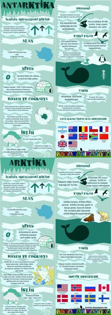 arktikinfografik