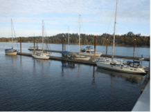 Adventures of Sauvie Island Yacht Club