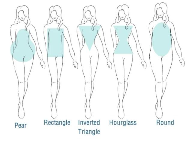 body shape diagram