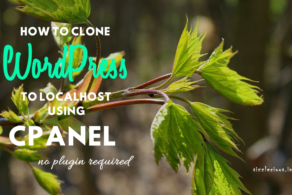 Clone a Live WordPress Site to Localhost using cPanel in 5 Easy Steps