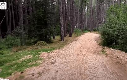 Idealno mesto za mir, tišinu, šetnju, vožnju biciklom sjenica sjenica.com