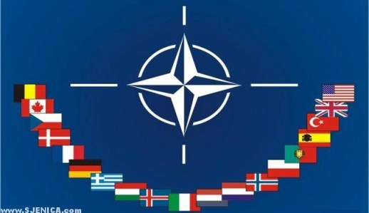 NATO members