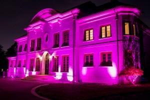 pink landscape lighting for Breast Cancer Awareness