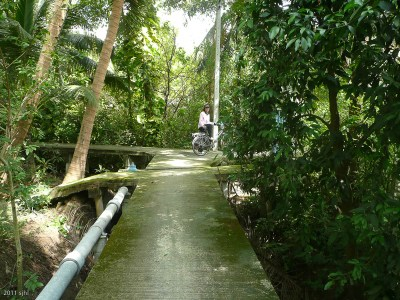 We were then in the peninsula where buildings aren't higher than 3 stories. This raised sidewalk took us past banana plantations, swamp land, houses, you name it!