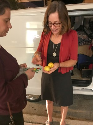 Indian Lemon blessing of a car