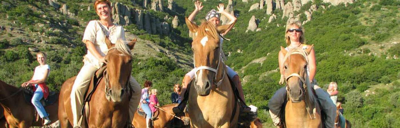 horse_konny