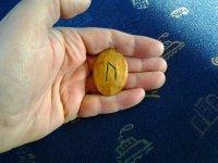 Ur-runan dragen för 10/3, 2012