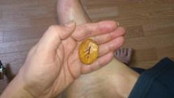 Feh-runan dragen för 27/1, 2013