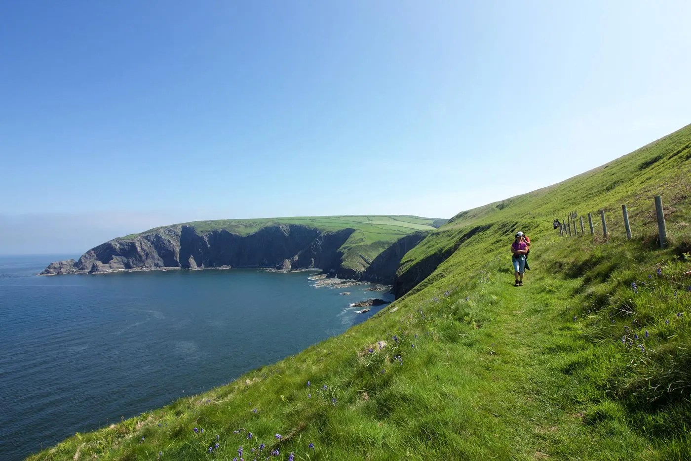 Walkers on the Pembrokeshire Coastal Footpath on a bright sunny day
