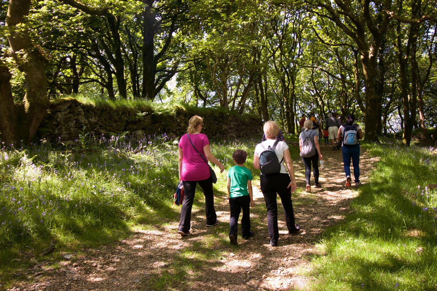 Sponsored walk in Ty Canol woods for Skanda Vale Hospice